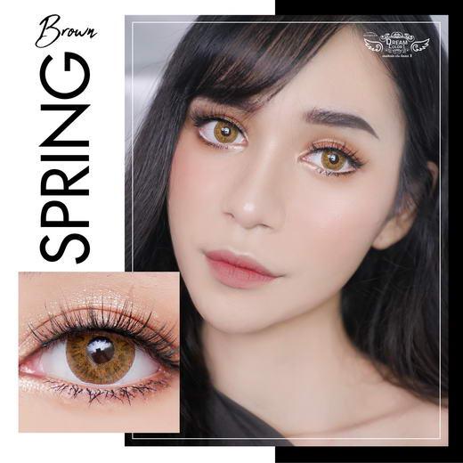 !Spring (mini) Dream Color1 Bigeye Images